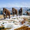 Libor Čermák: Co když může za doby ledové dosud neznámá planeta?