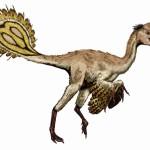 V Pákistánu zahlédli oranžového ptačího dinosaura