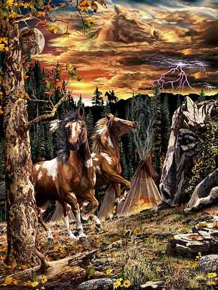14 koní