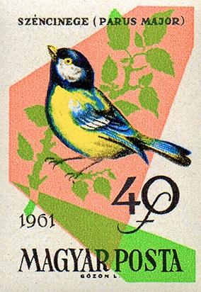 1427_Birds_40