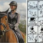 Hlavolam: 10 koní