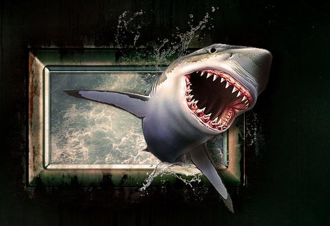 shark-1626288_960_720