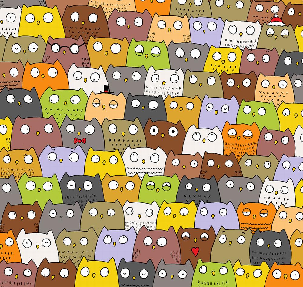 Kočka mezi sovami
