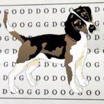 Hlavolam: Dokážete najít na papírku slovo DOG?