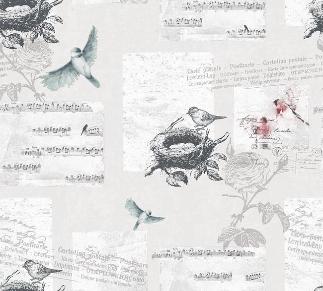 birds-1523934_960_720