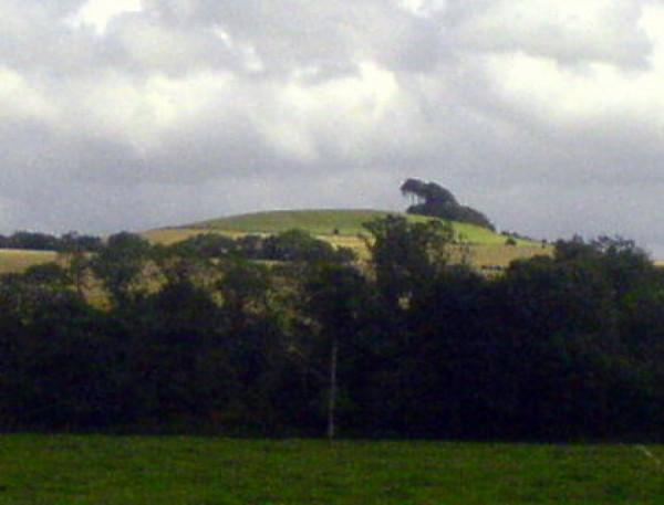 606790_article_photo_woodborough-hill_600x