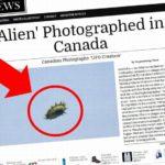 ZELENÉ ROHATÉ UFO: vyfotili ho v Kanadě