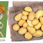 Češi jsou bramborovým národem. Nejoblíbenější je bramborová kaše