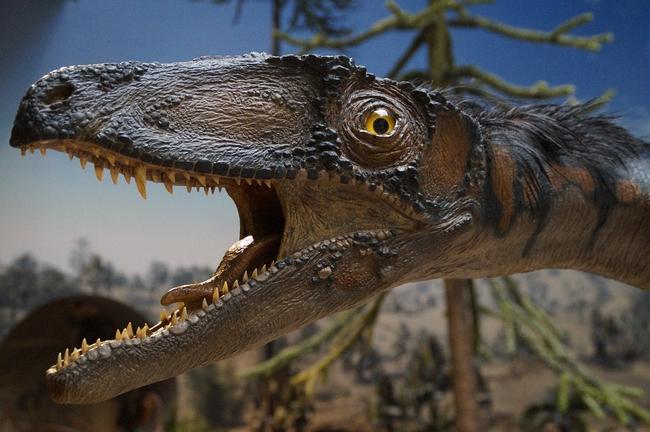 prehistoric-times-1257162_960_720